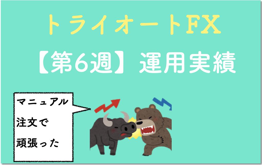トライオートFXの運用実績6週目(表紙)