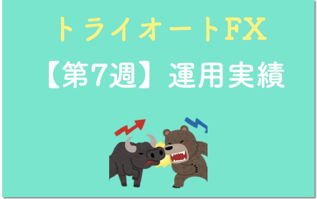トライオートFX7週目の表紙