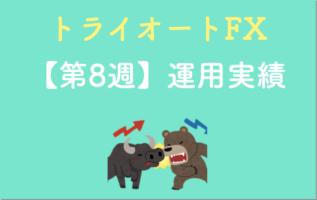 トライオートFXの運用実績8週目