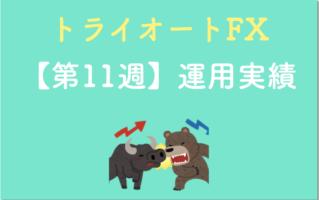 トライオートFX11週目の結果